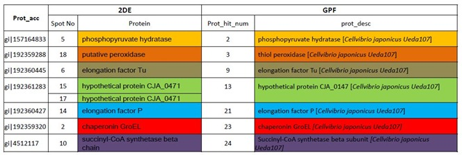 top-7-common-proteins